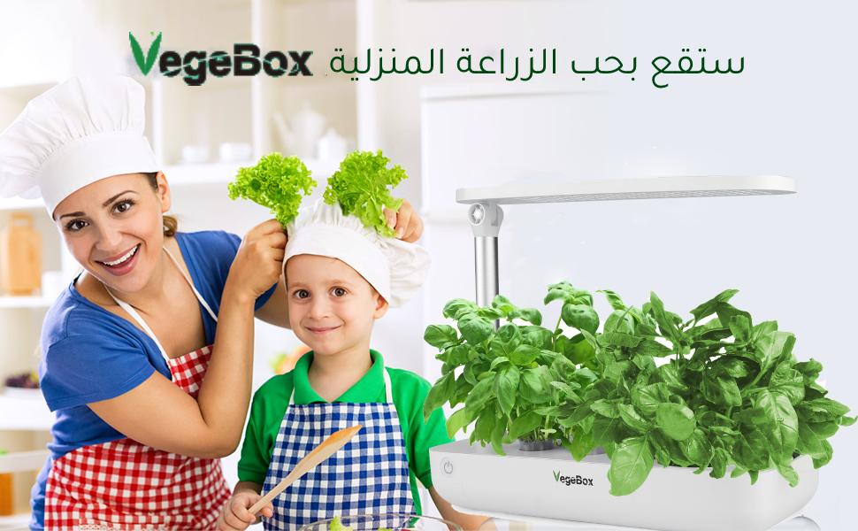 products/2021/07/1626171982XmLqB.jpg